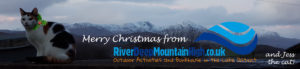Cat with holly in front of snowy mountains - Merry Christmas message
